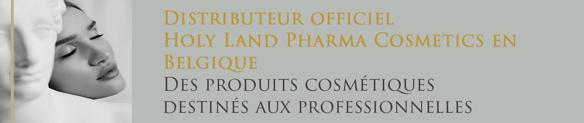 BeautyLab Cosmetic | Holy Land Official resseler for Belgium